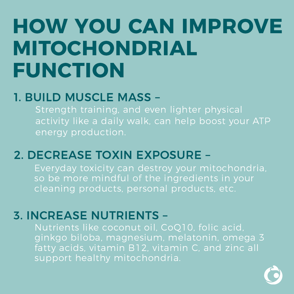 improve mitochondrial function