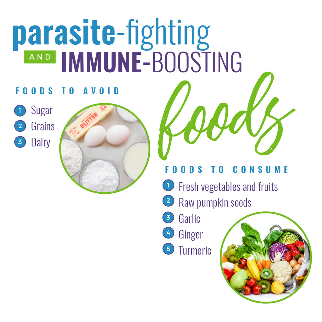 Parasite-Fighting and Immune-Boosting Foods