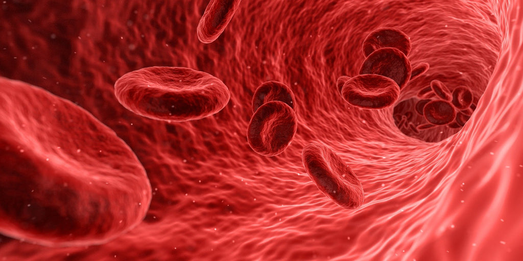 Babesia lives inside red blood cells
