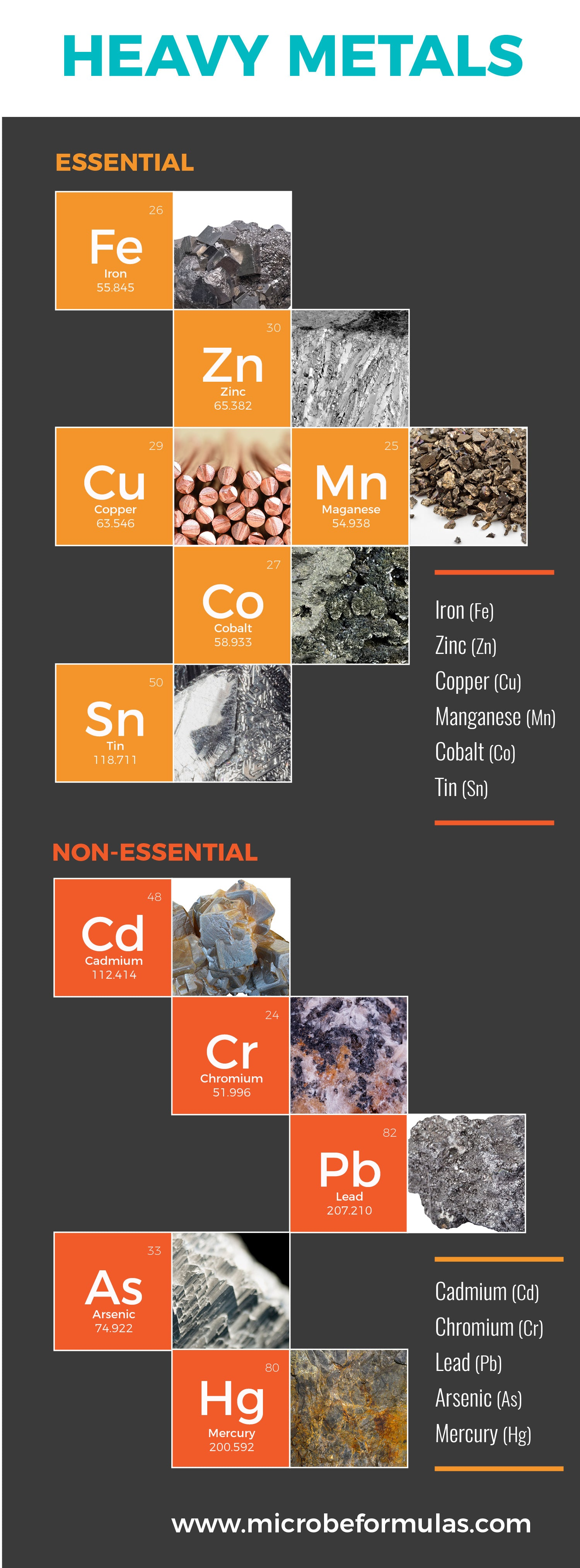 Heavy Metals Essential vs Non-essential