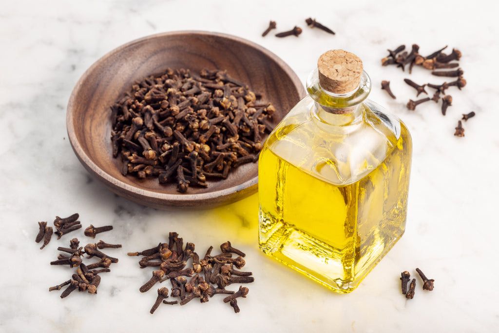 Clove is the highest eugenol source