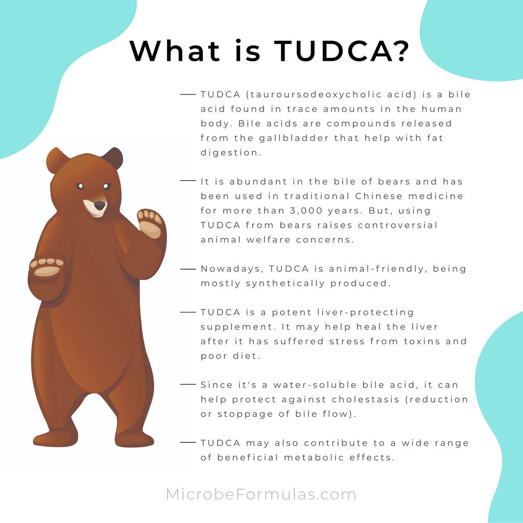 What is TUDCA explained