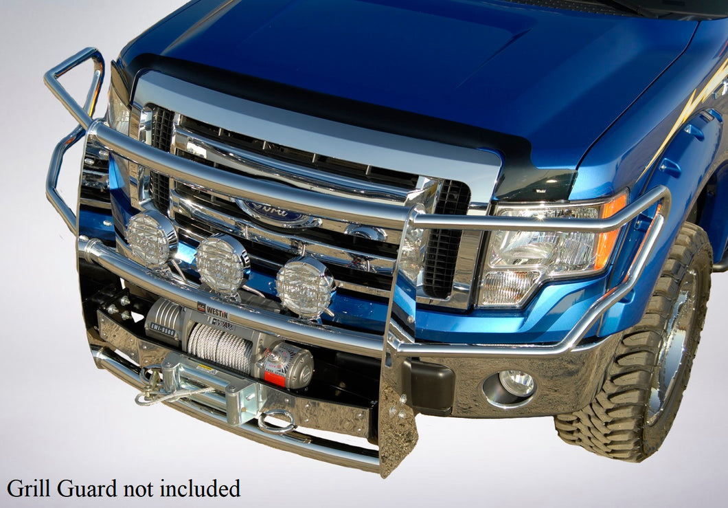 2013 Ford F-150 Bug Shield