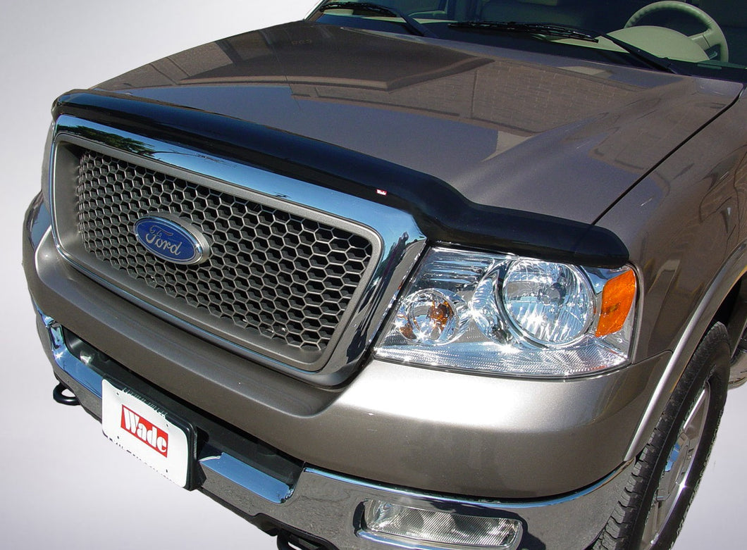 2005 Ford F-150 Bug Shield