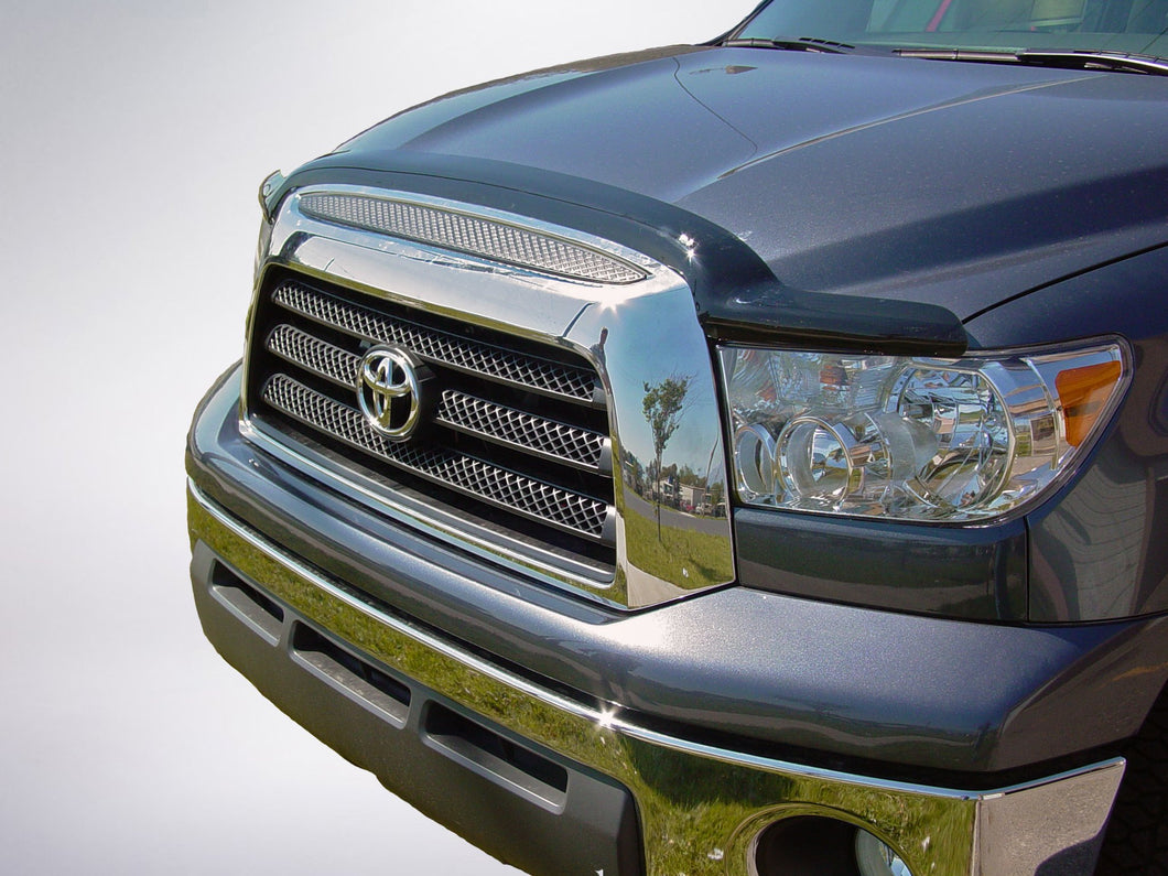2010 Toyota Tundra Bug Shield