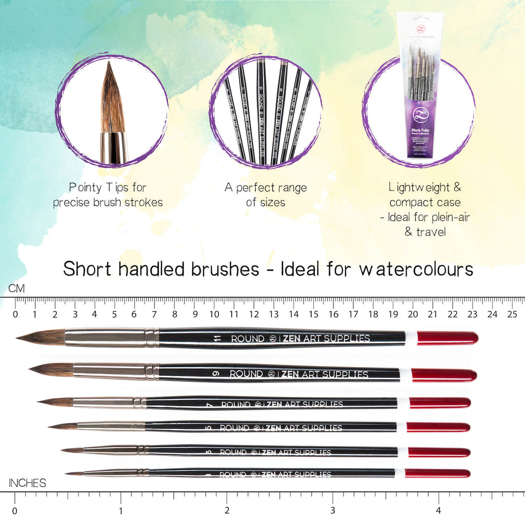 BLACK TULIP 6 Piece Professional Brush Set For Watercolor Gouache & Fluid Acrylics