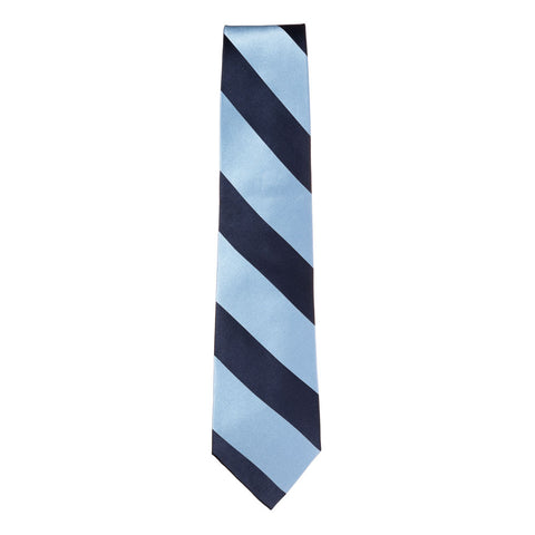 Light Blue / Dark Blue Silk Tie