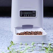 6 Liter Automatic Pet Feeder