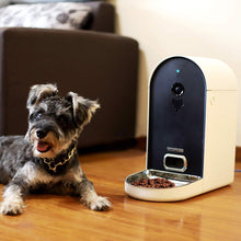 Automatic WiFi Dog/Cat Smart Feeder w/ Camera