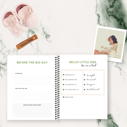 PREGNANCY JOURNAL (DESIGN FIVE)