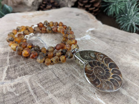 Ammonite and Amber Necklace