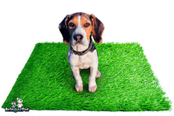 "Artificial Grass for Dogs 30""x20"" Outdoor Indoor dog potty fake grass for dogs Replacement Turf"