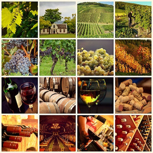 Wine Tasting, Cheese and Wine Tasting, Harrogate, North Yorkshire