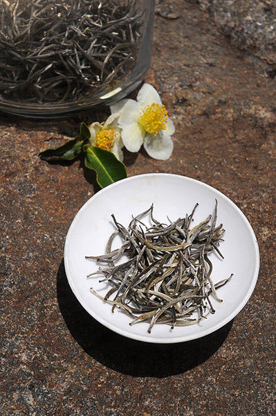 Shining Arrows White Tea