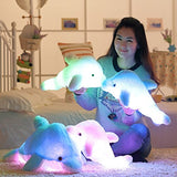Led Light Pillow Dolphin Toy - Kawaii Treats