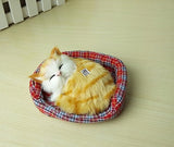Stuffed Sounding Sleeping Cat with Nest Doll