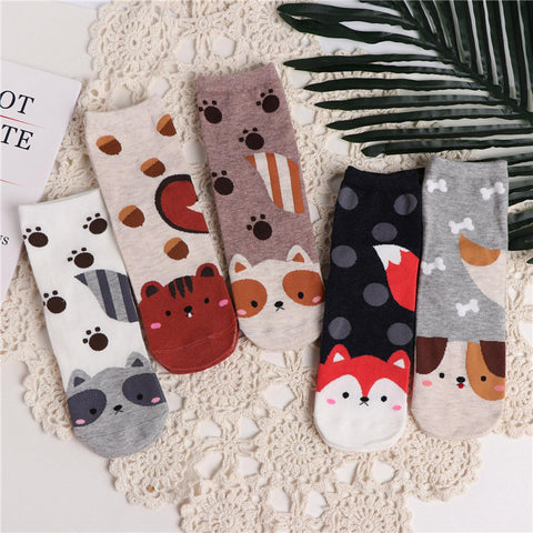 Cute Cotton Socks <5 Designs>