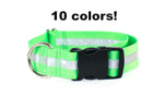 "1.5"" Reflective Buckle Collar - Fox Valley Dog Collars"