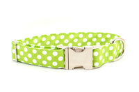 Lime with White Polka Dots Adjustable Dog Collar - Fox Valley Dog Collars