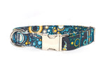 Effervescence Riviera Adjustable Dog Collar