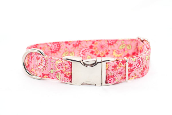 Strawberry Paisley adjustable dog collar, medium - Fox Valley Dog Collars