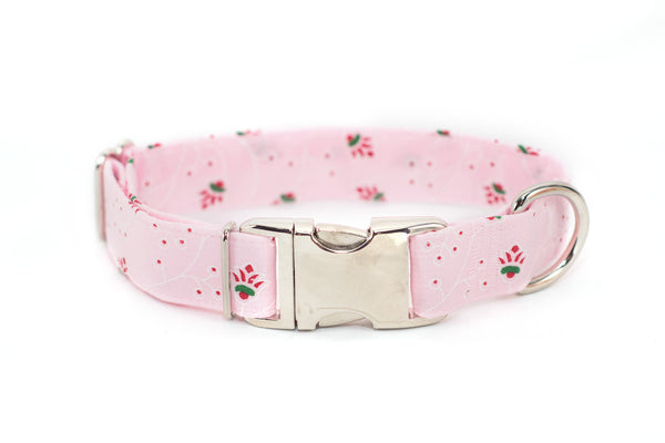 Strawberry Shortcake Adjustable Dog Collar - Fox Valley Dog Collars