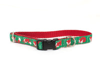 Red Foxes adjustable dog collar - Fox Valley Dog Collars