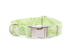 Spring Green Floral adjustable dog collar, medium - Fox Valley Dog Collars
