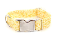 Golden Floral adjustable dog collar, medium - Fox Valley Dog Collars