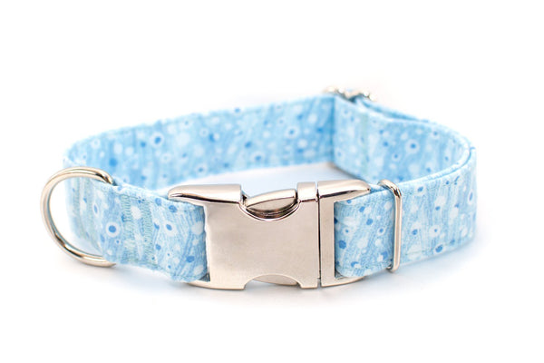 Blue Bubbles adjustable dog collar, medium - Fox Valley Dog Collars