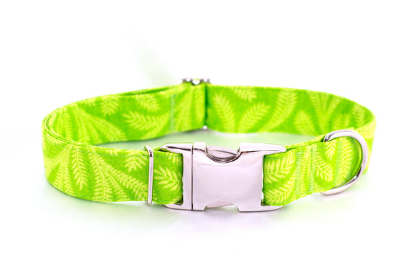 Ferns Adjustable Dog Collar - Fox Valley Dog Collars