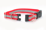 Reflective BREAKAWAY Dog Collar