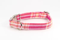 Pink and Yellow Plaid adjustable dog collar, small - Fox Valley Dog Collars
