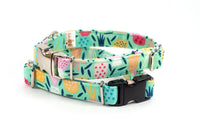 Tropical Pineapples on Mint adjustable dog collar, small - Fox Valley Dog Collars