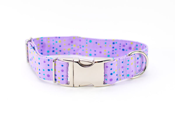 Mini Multi Dots on Lavender Adjustable Dog Collar - ready to ship!