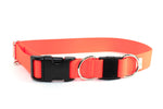 "Neon Orange Breakaway Collar - 1"" Large - Fox Valley Dog Collars"