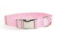 """Payton"" adjustable dog collar, medium - Fox Valley Dog Collars"