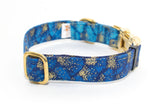 Blue Metallic Gradient with Brass hardware adjustable dog collar, medium - Fox Valley Dog Collars