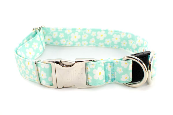 "XL - 1.5"" wide - LAST ONE! Spring Flowers on Aqua BreakAway Dog Collar"