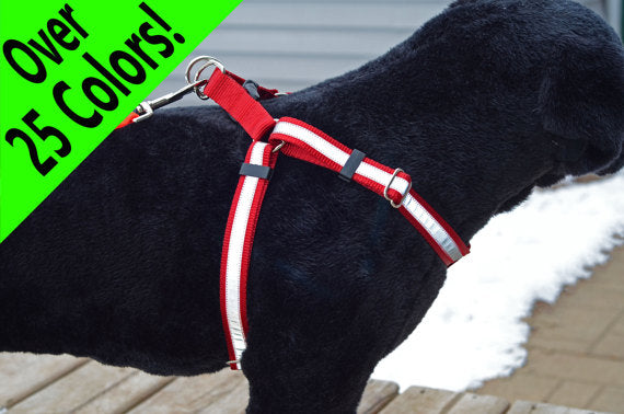 Reflective Step-In Dog Harness - Fox Valley Dog Collars