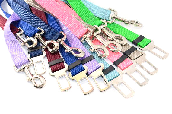 Dog Seat Belt Tether - Fox Valley Dog Collars