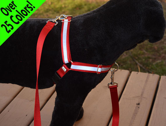 Reflective Dual-Attach No-Pull Harness™ - Fox Valley Dog Collars
