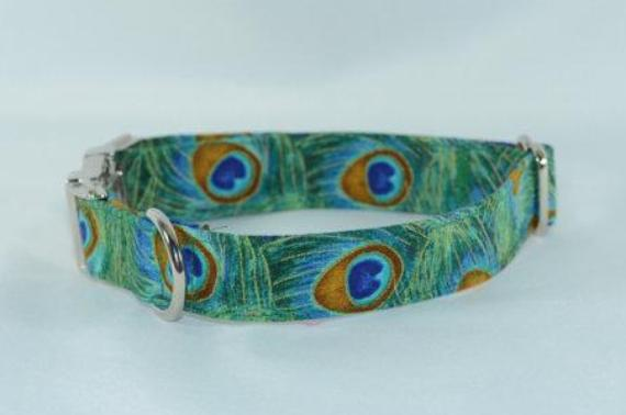 3c5f07d0649e ... Peacock Feathers Metallic Accented Adjustable Dog Collar - Fox Valley  Dog Collars ...