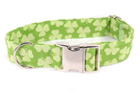 Lucky Shamrocks Adjustable Dog Collar - Fox Valley Dog Collars