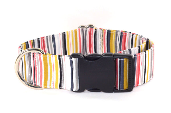 DogGone Stripes Adjustable Dog Collar - Fox Valley Dog Collars