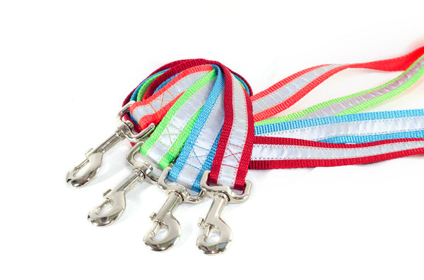 Reflective Safety Leashes