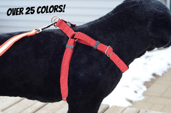 Basic Solid Color Step-In Dog Harness - Fox Valley Dog Collars