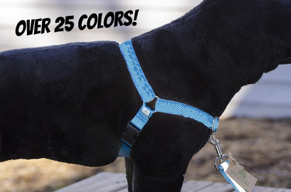 Basic Solid Color No-Pull Dog Harness - Fox Valley Dog Collars