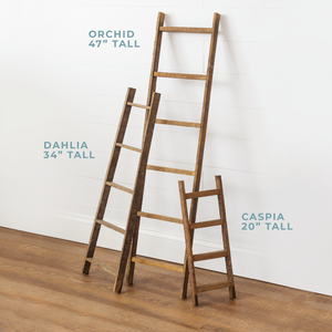 "Dahlia 34"" Tall Tapered Accent Ladder - H&R Lifestyle"