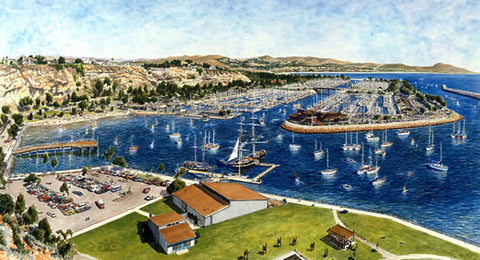 A Painting of Dana Point Harbor: Dana Dreams — Endless Summer